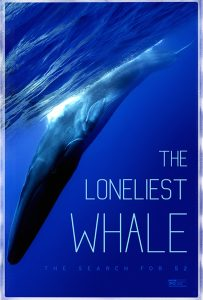 'The Loneliest Whale' pleads the case for connection